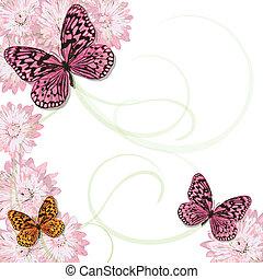 雛菊, 蝴蝶, 邀請
