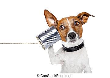 電話, 狗