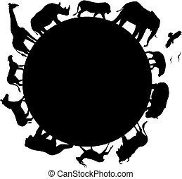 非洲, 黑色半面畫像, 動物