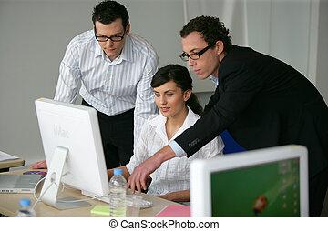 項目, 專業人員, 工作, 事務, 一起