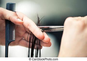 頭髮麤毛交織物切割, 美容師