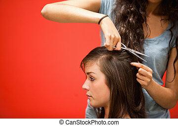 頭髮, 學生, 美容師, 切