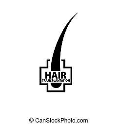 頭髮, 細節, 插圖