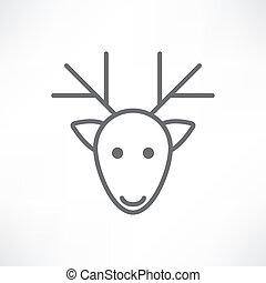 頭, 鹿, 白色 背景