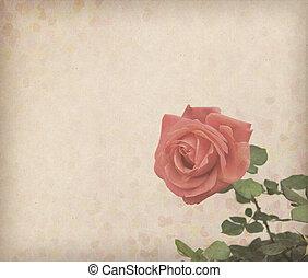風格, grunge, retro, 玫瑰, 設計