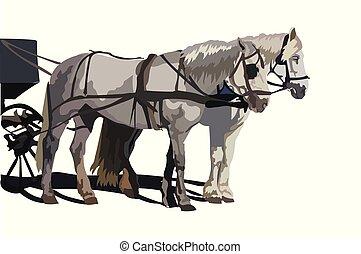 馬, 矢量, 二, 鮮艷
