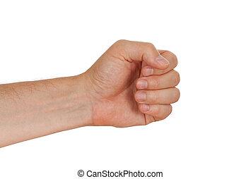 高加索人, 握住, 錘子, 工具, 男性, 被隔离, 手, 其他, 懷特花, 或者, 束