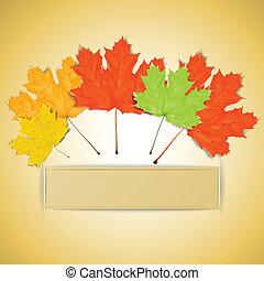 鮮艷, 正文, 離開, 秋天, 地方, 你