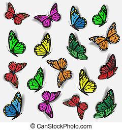 鮮艷, 蝴蝶