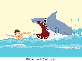 鯊魚, 攻擊