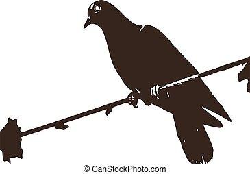 鳥, 矢量, 自然, 插圖
