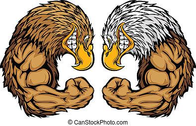 鷹, 吉祥人, 屈曲, 卡通, 武器
