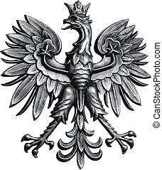 鷹, 波蘭