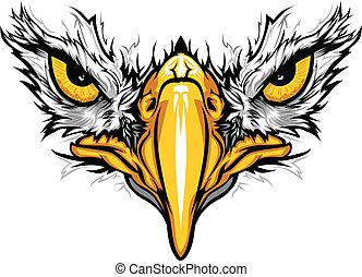 鷹, 眼睛, 矢量, 插圖, 額嘴