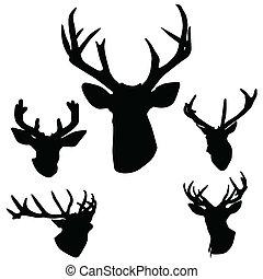 鹿角, 鹿, 黑色半面畫像