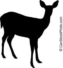 鹿, 白色, 黑色半面畫像, 背景