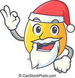 黃金, 反映, 形狀, 聖誕老人, 蛋, 卡通