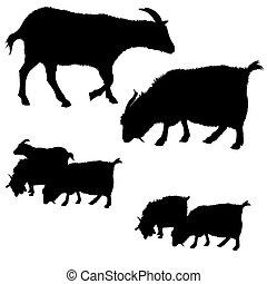 黑色半面畫像, 彙整, goat, 矢量