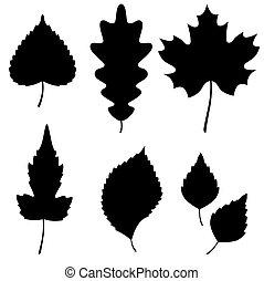 黑色半面畫像, 矢量, 葉子, 彙整