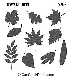 黑色半面畫像, 葉子, 彙整