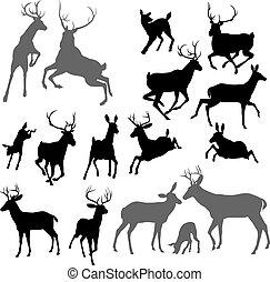 黑色半面畫像, 鹿, 動物