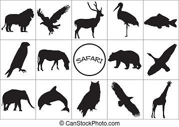 黑色半面畫像, 黑色, animals.