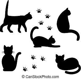 黑色半面畫像, 黑色, cats.