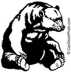 黑色的熊, 坐, 白色