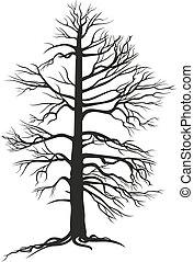 黑色, 樹, branchy, 根