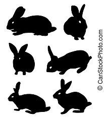黑色, 黑色半面畫像, 兔子
