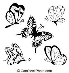 黑色, t, 蝴蝶, 集合, 白色
