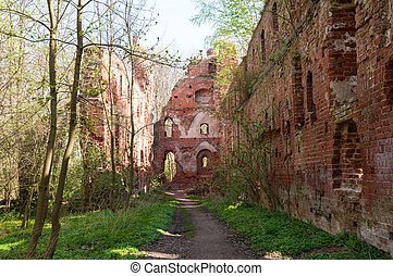 balga, 中世紀, 毀滅, -, 區域, teutonic, 城堡, kaliningrad, knights., russia