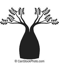boab, 澳大利亞人, 樹