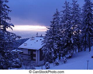 chalet, 滑雪