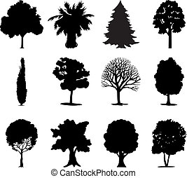colour., 插圖, one-ton, 矢量, 黑色, 樹