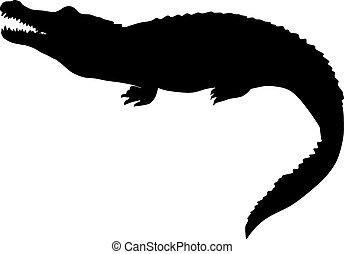 crockodile., 被隔离, 插圖, 矢量, 黑色, 黑色半面畫像
