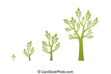 eco, 綠色, 概念, 樹, 成長