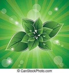 eco, 綠葉, 矢量, 設計