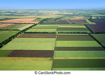 fields., 觀點。, 空中
