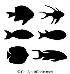 fish-, 矢量, 黑色, 黑色半面畫像, 插圖