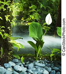 garden., 東方