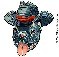 hat., 插圖, 狗, 矢量, 牛仔