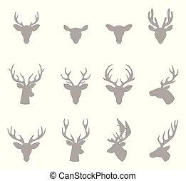 horns., 頭, 鹿