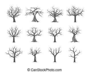 illustration., leaves., 彙整, 沒有, 矢量, 樹