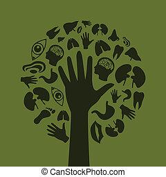 tree3, 手