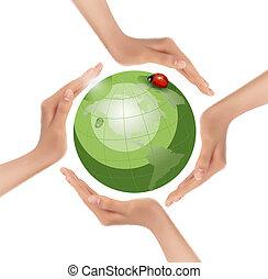 vector., ladybug., 綠色, 扣留手, 地球