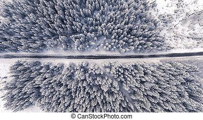 winterland, 路, 空中的觀點