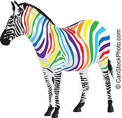 zebra., 不同, 剝去, colors.